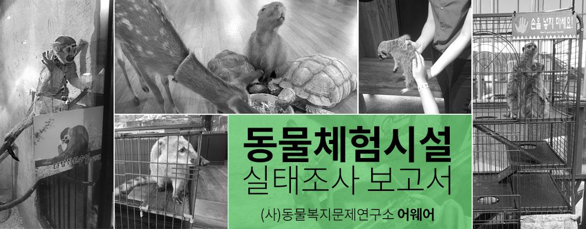 동물체험시설 실태조사 보고서 (다운로드)