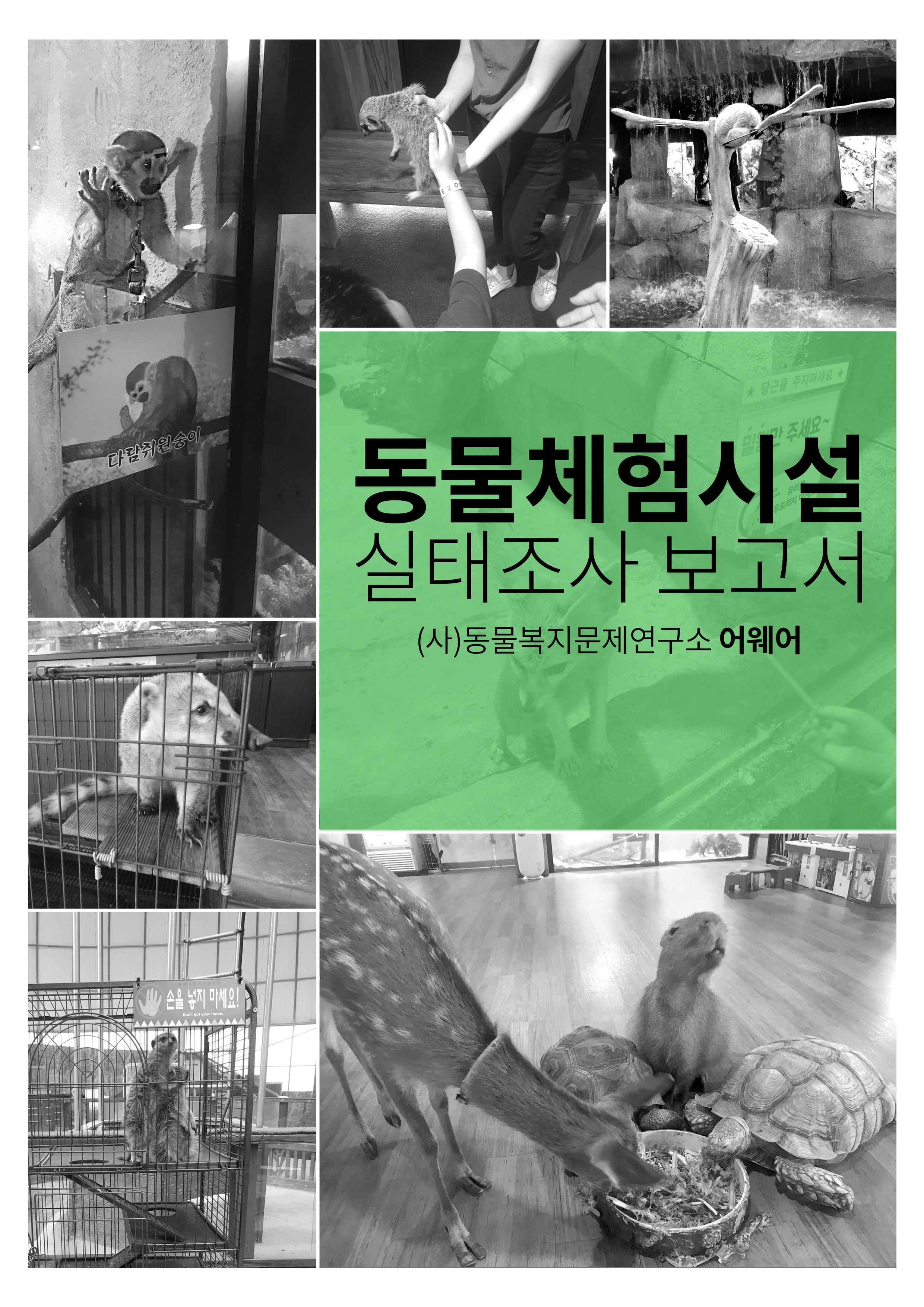 동물체험시설 실태조사 보고서 다운로드