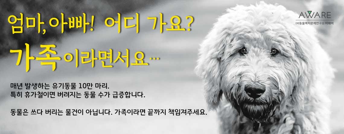 """[언론보도]""""반려동물은 쓰다 버리는 물건이 아닙니다"""" (휴가철 유기동물 방지 캠페인)"""